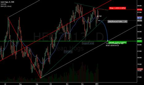 HEG2013: Feb13 Hogs sell