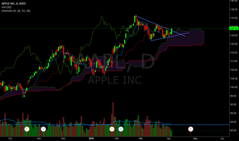 AAPL: AAPL  I think may be the time