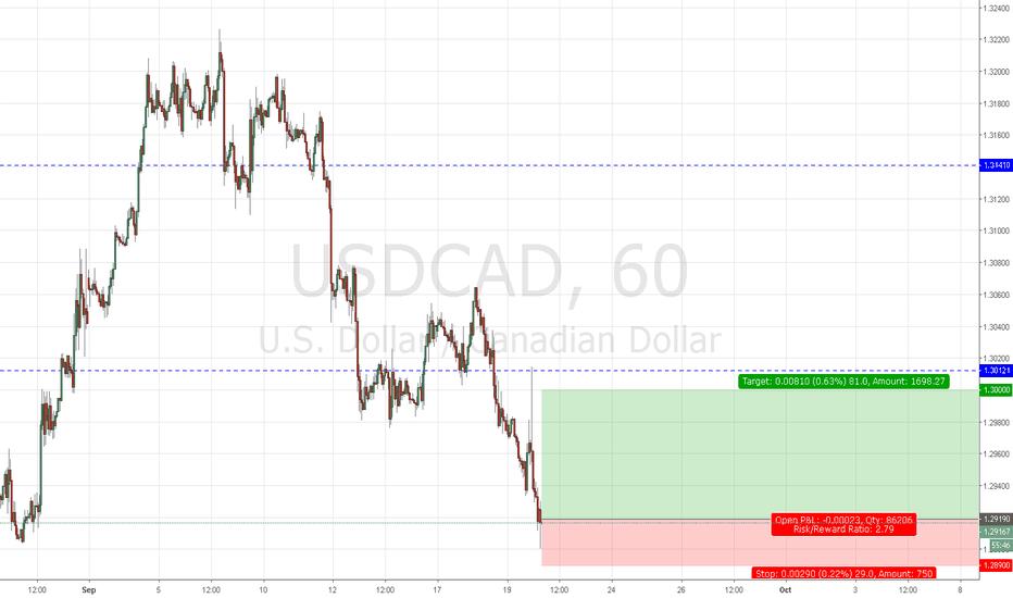 USDCAD: usdcad buy  1.2919sl 1.2890 tp 1.3000