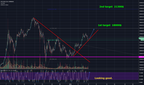 BTCUSD: BTC on the next 2 days for 18500$