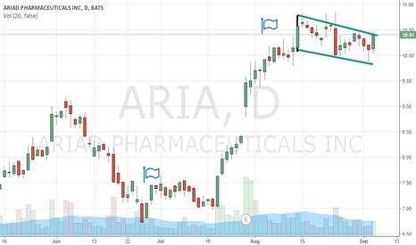 ARIA: Aria Long