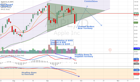 AAPL: Extended Bull Flag or the end of the uptrend.