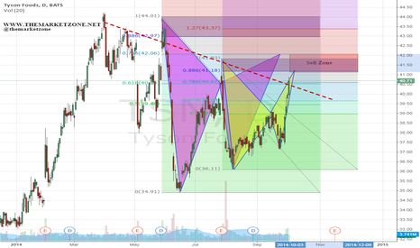 TSN: Two harmonic patterns - 1$ Sell Zone
