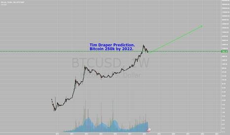 BTCUSD: Tim Draper $250,000 Bitcoin Prediction by 2022.