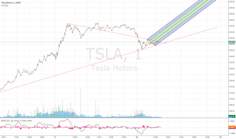 TSLA: TSLA by min analysis?