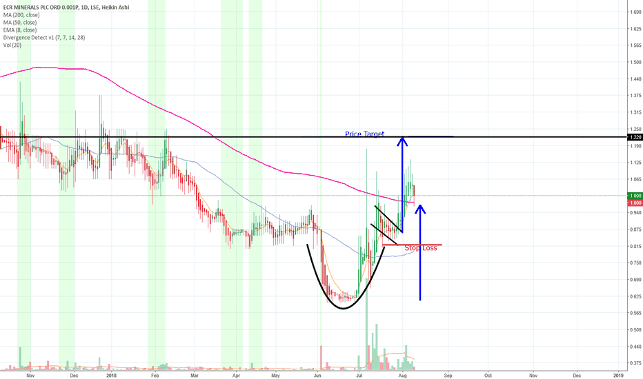 ECR: ECR Minerals Cup and Handle
