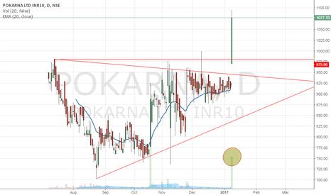 POKARNA: Pokarna Ltd - Multibagger in progress?