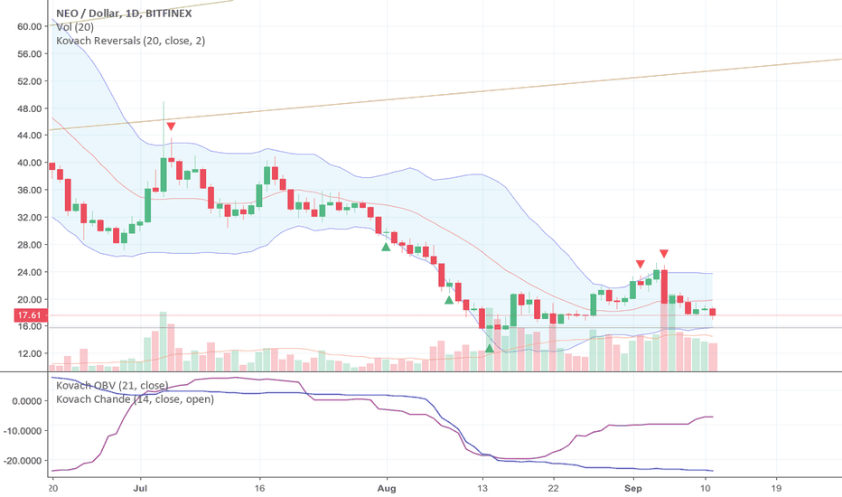 NEOUSD: Neo Pummeled, Testing Support