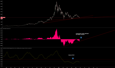BTCUSD: BTC CHART on SLOW MACD and RSI