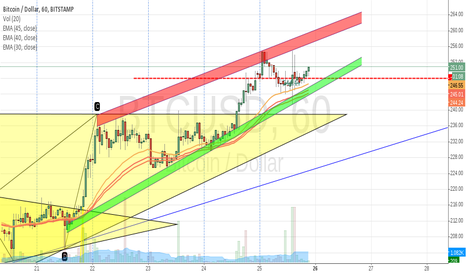 BTCUSD: Take walk on the wild side