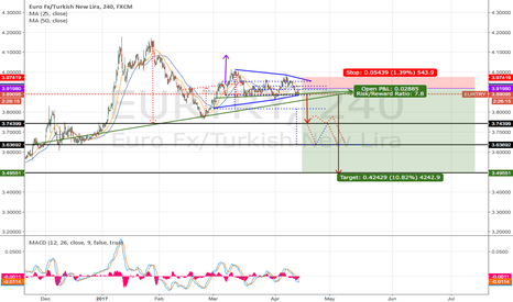 EURTRY: What will happen with the TRY till the end of the year 2017