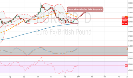 EURGBP: hug that bear