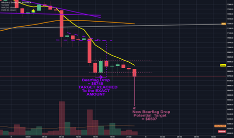 BTCUSD: Bearflag drop reached the exact amount predicted; more downside