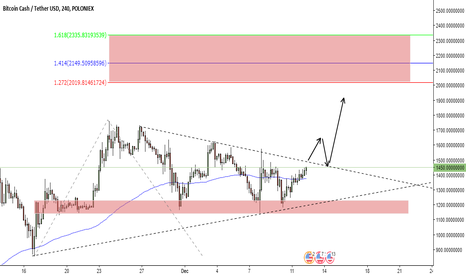 BCHUSDT: Bitcoin Cash / Tether USD Possible Scenario