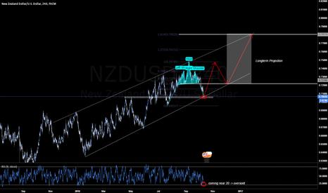 NZDUSD: NZDUSD #KIWI 4h Long