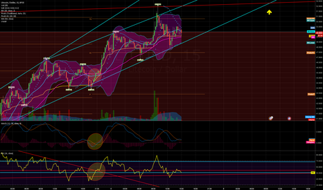 LTCUSD: Climb to the arrow and lets she what she does - $LTCUSD