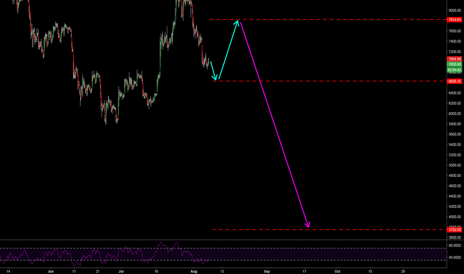 BTCUSD: Bitcoin Next Moves