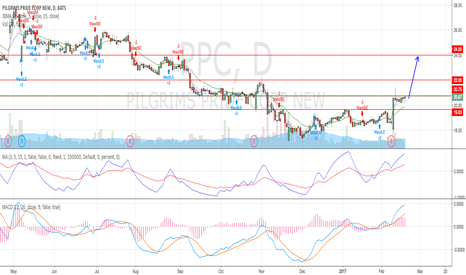 PPC: Sideways consolidation happened after the breakout two weeks ago