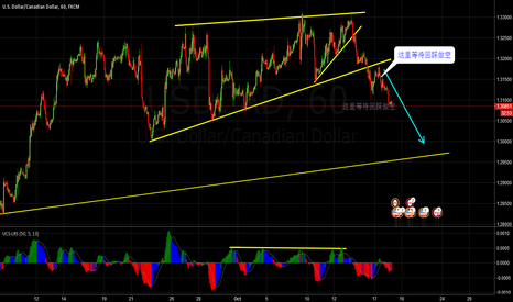 USDCAD: Just my first idea, this was published too late,^_^
