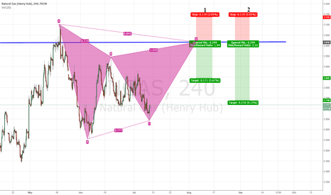 NGAS: NGAS Gartley