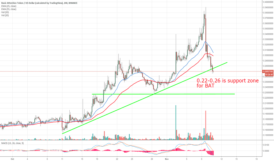 BATUSD: BAT will find support after the coinbase effect