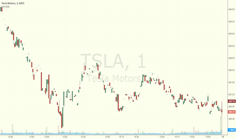 TSLA: Test of publish idea