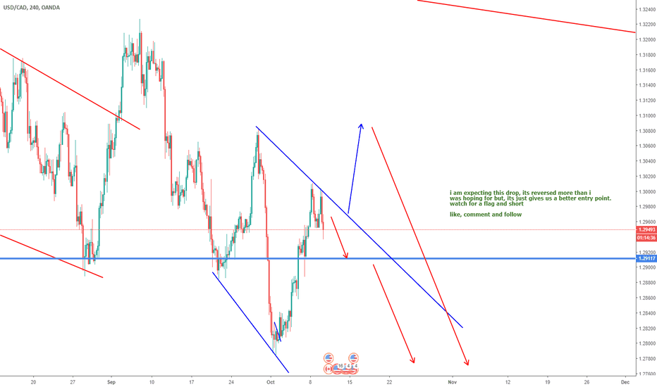 USDCAD: USDCAD this week