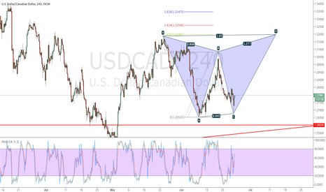 USDCAD:  beautiful butterfly
