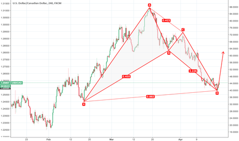 USDCAD: bullish bat from usdcad