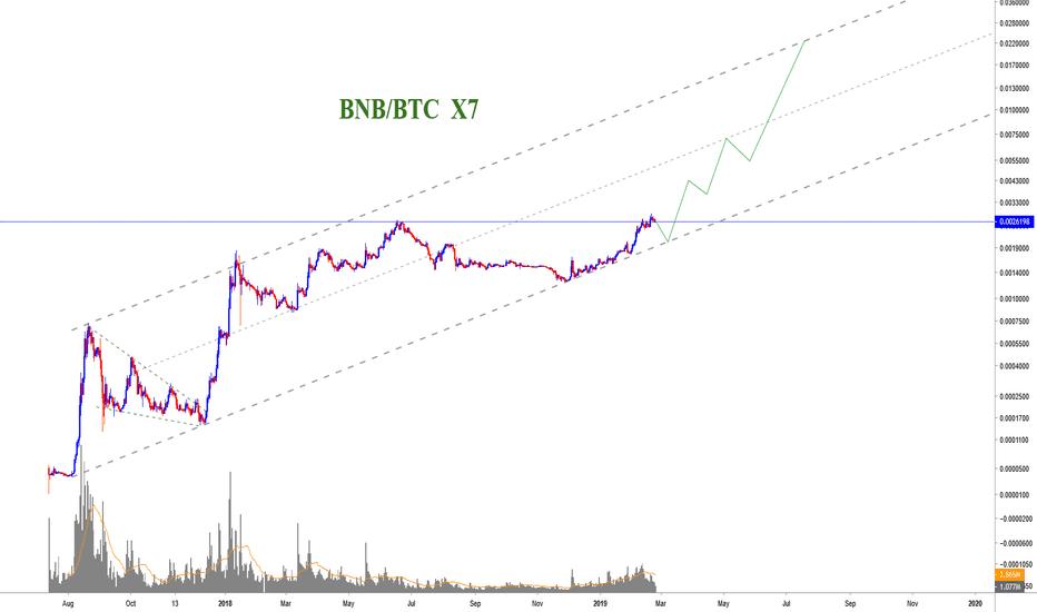 bnb btc tradingview bitcoin investicijų platformos scenarijus