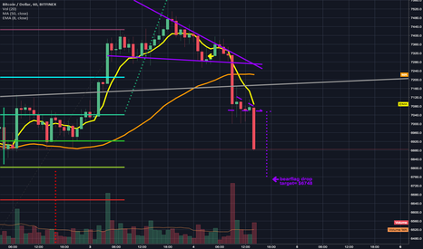 BTCUSD: new low still yet to be found only a bearflag breakdown