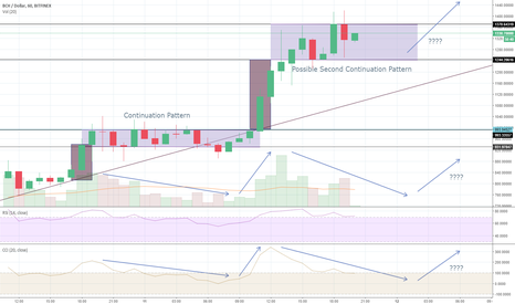 BCHUSD: BCH Possible Second Consecutive Continuation Pattern