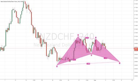 NZDCHF: Bull Bat