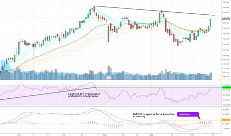 BDX: Trade Idea --- RSI & MACD ----
