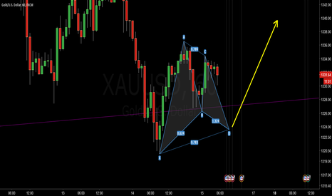 XAUUSD: GOLD  Gartley  and fly up