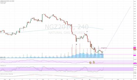 NGZ2016: Natty may have bottomed