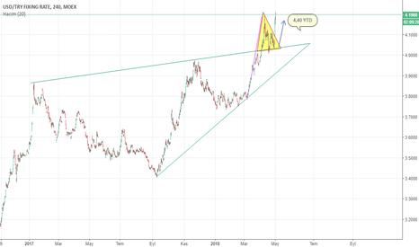 USDTRY: USD TRY 4,40 YTD