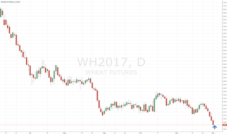 WH2017: Wheat -- near long opportunity