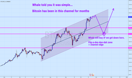 BTCUSD: Bitcoin - I told you it was simple