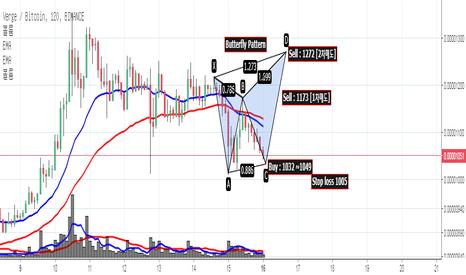 XVGBTC: [버지/BTC Market] 브리핑 안내