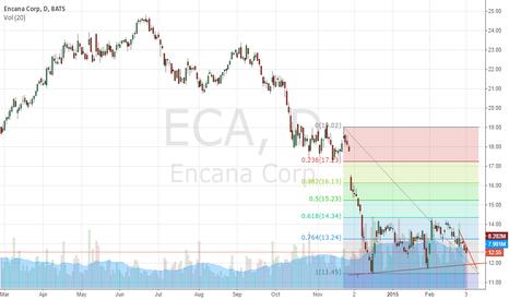 ECA: ECANA technical