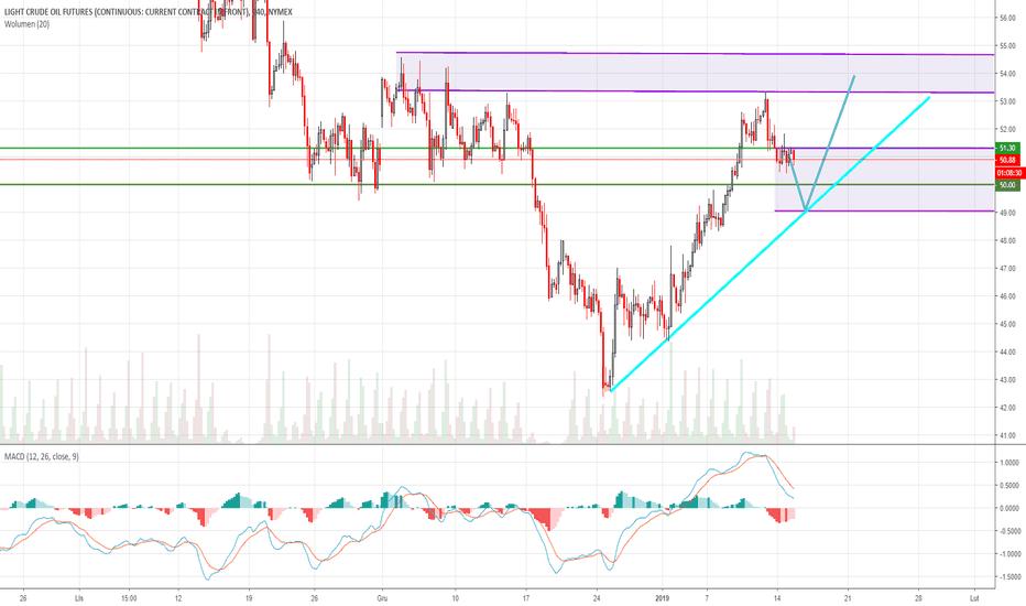 CL1!: Ropa - EIA i OPEC raporty - 50 USD kluczowe dla byków