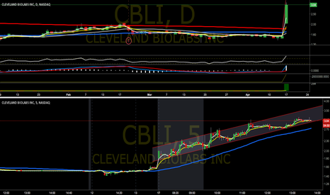 CBLI: Beautiful up trend