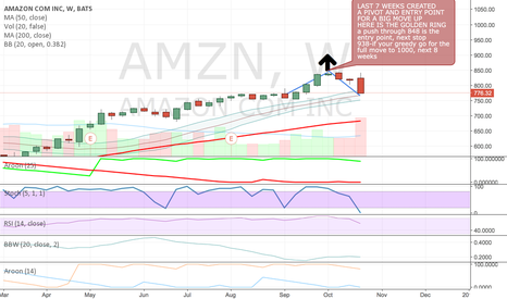 AMZN: AMZN THE GOLDEN RING