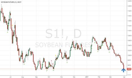 S1!: Soybean -- good position for medium term long