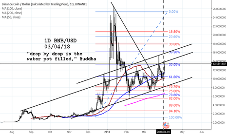 BNBUSD: BNB/USD pot filling up steadily