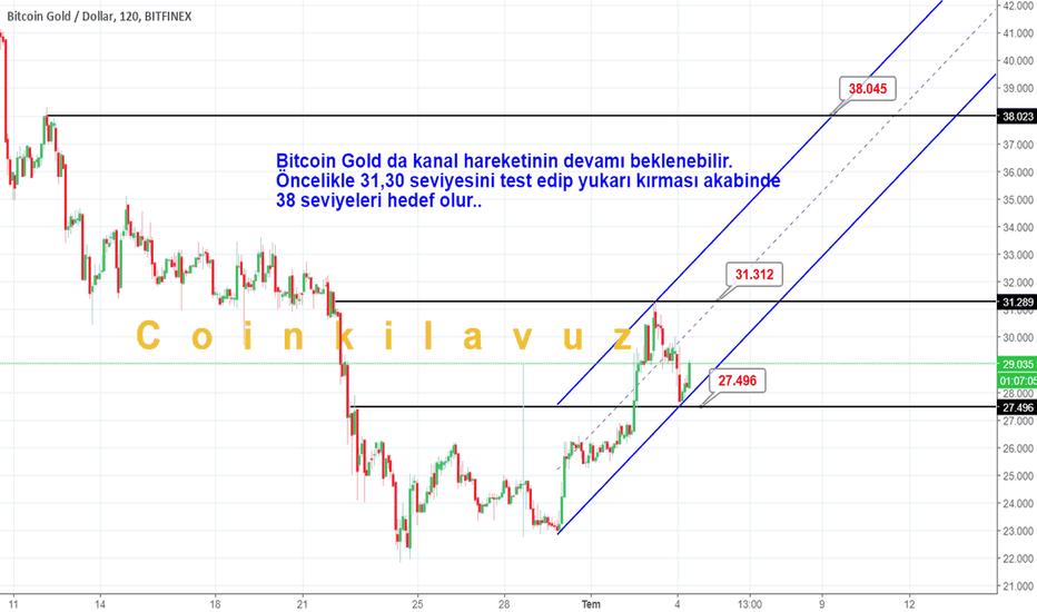 BTGUSD: Bitcoin Gold