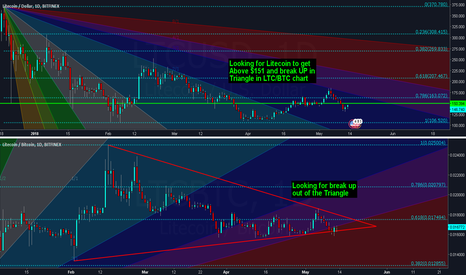 LTCUSD: Litcoin Dual Chart vs Bitcoin & USD Roadmap [BTFD]