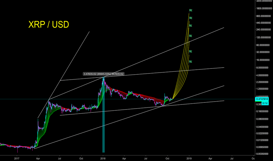 XRPUSD: XRP/USD - THE ONE-EYED JACK HAS BEEN VERY BUSY - CryptoManiac101