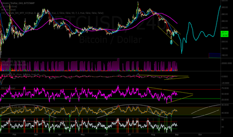 BTCUSD: Final Bitcoin Prediction
